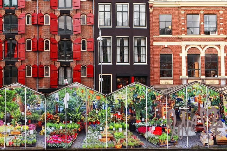 Märkte in Amsterdam_Paradies für Schnäppchenjäger_ Bloemenmarkt_Schwimmender Blumenmarkt